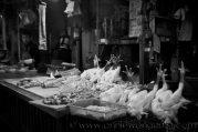 poultry (ii)