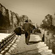 huangshan porter (xi)